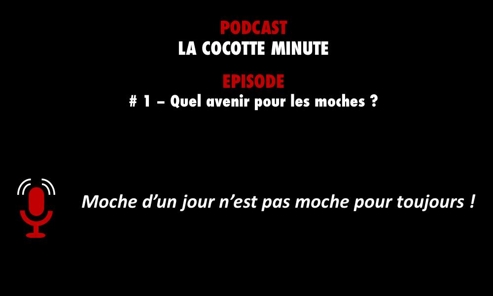 PODCASTZAP : Cocotte Minute - épisode 1 Quel avenir pour les moches ?