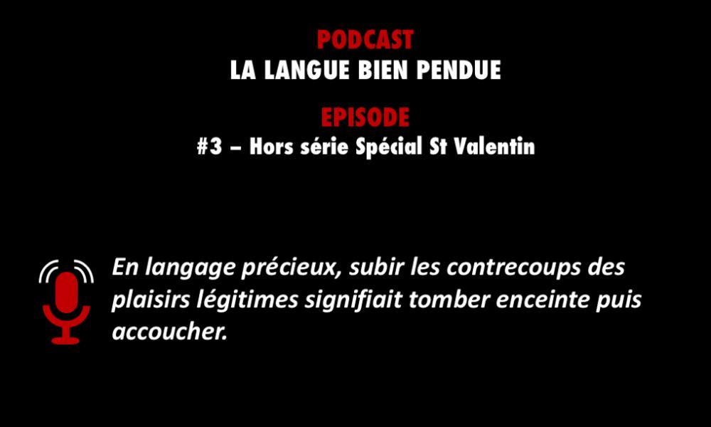 PODCASTZAP : La langue bien pendue 3 - Hors série spécial St Valentin